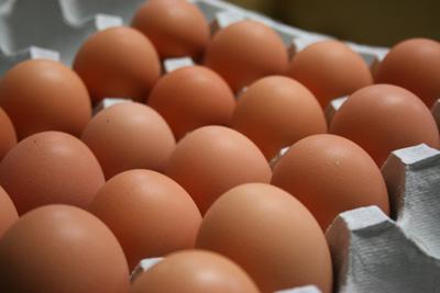 100429_(有)ムラオカ様_A卵