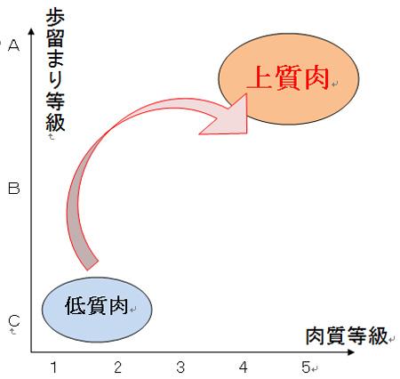100327_鳥山畜産食品(株)様_牛肉の格付け
